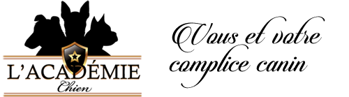 logo L'AcademieChien